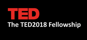 The TED 2018 Fellowship program (Fully Funded)